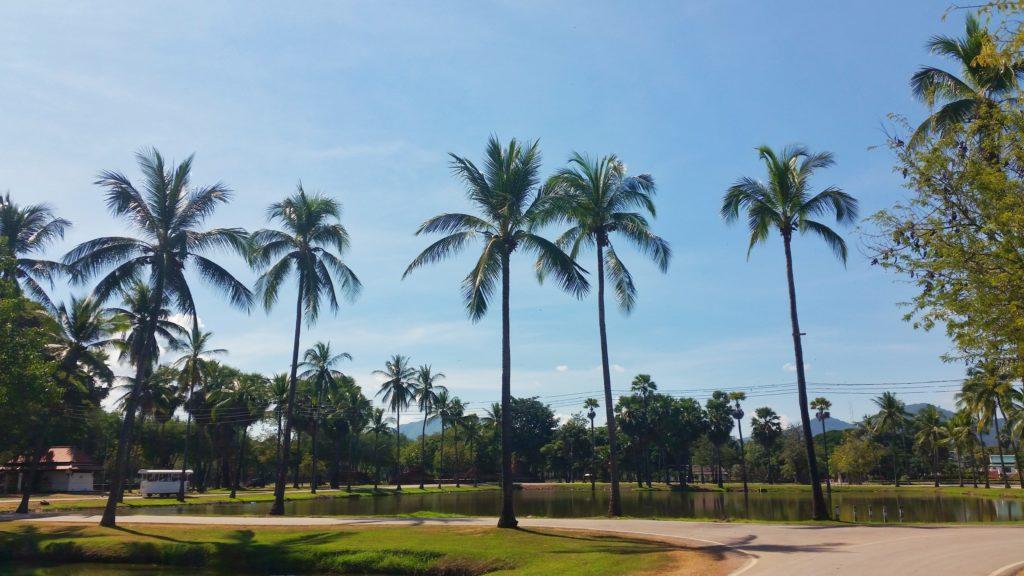 Sukhothai - park