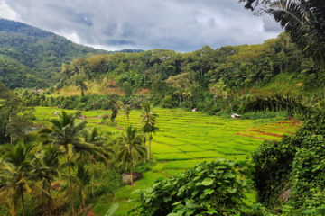 Dlaczego Flores to najpiękniejsza wyspa Indonezji (24)