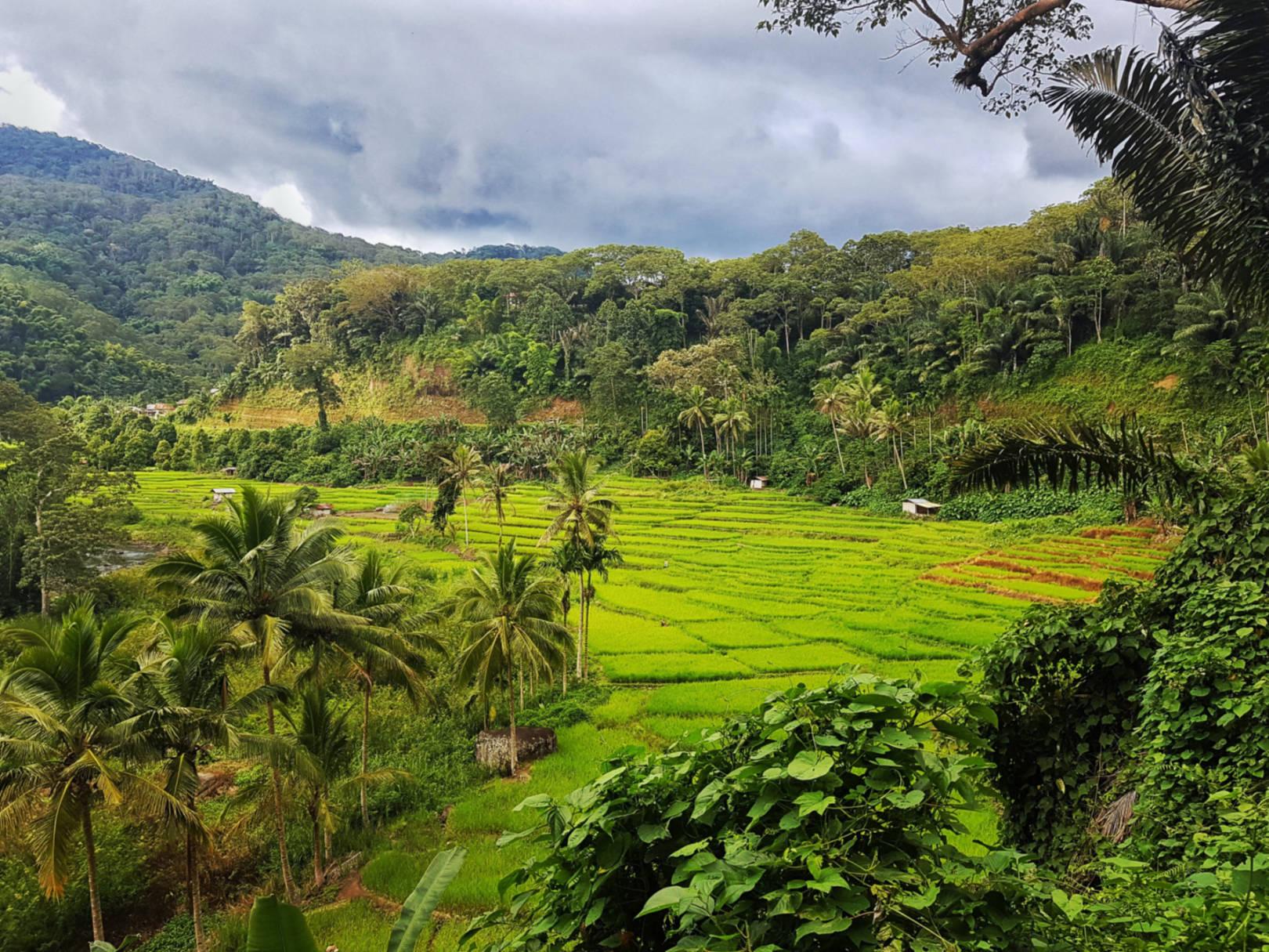 Dlaczego Flores tonajpiękniejsza wyspa Indonezji (24)
