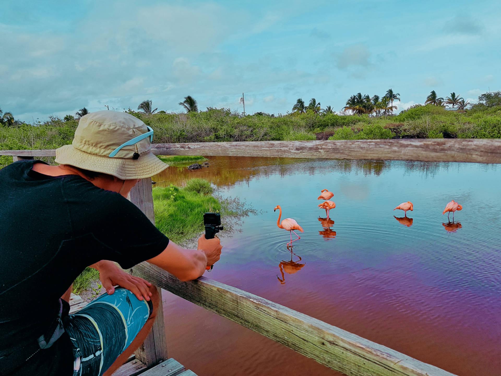 Jak tanio zwiedzić Wyspy Galapagos Darmowe atrakcje nawyspach (20)