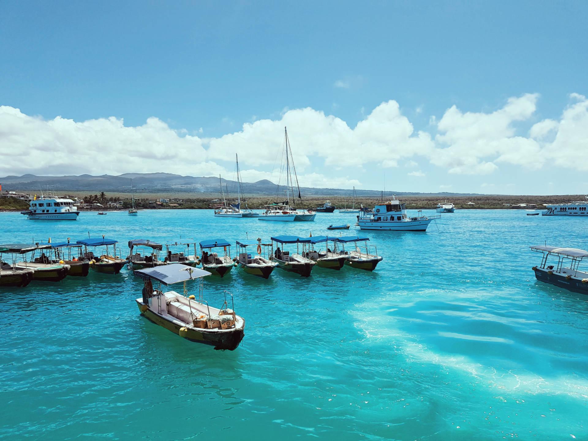 Jak tanio zwiedzić Wyspy Galapagos Darmowe atrakcje nawyspach (3)