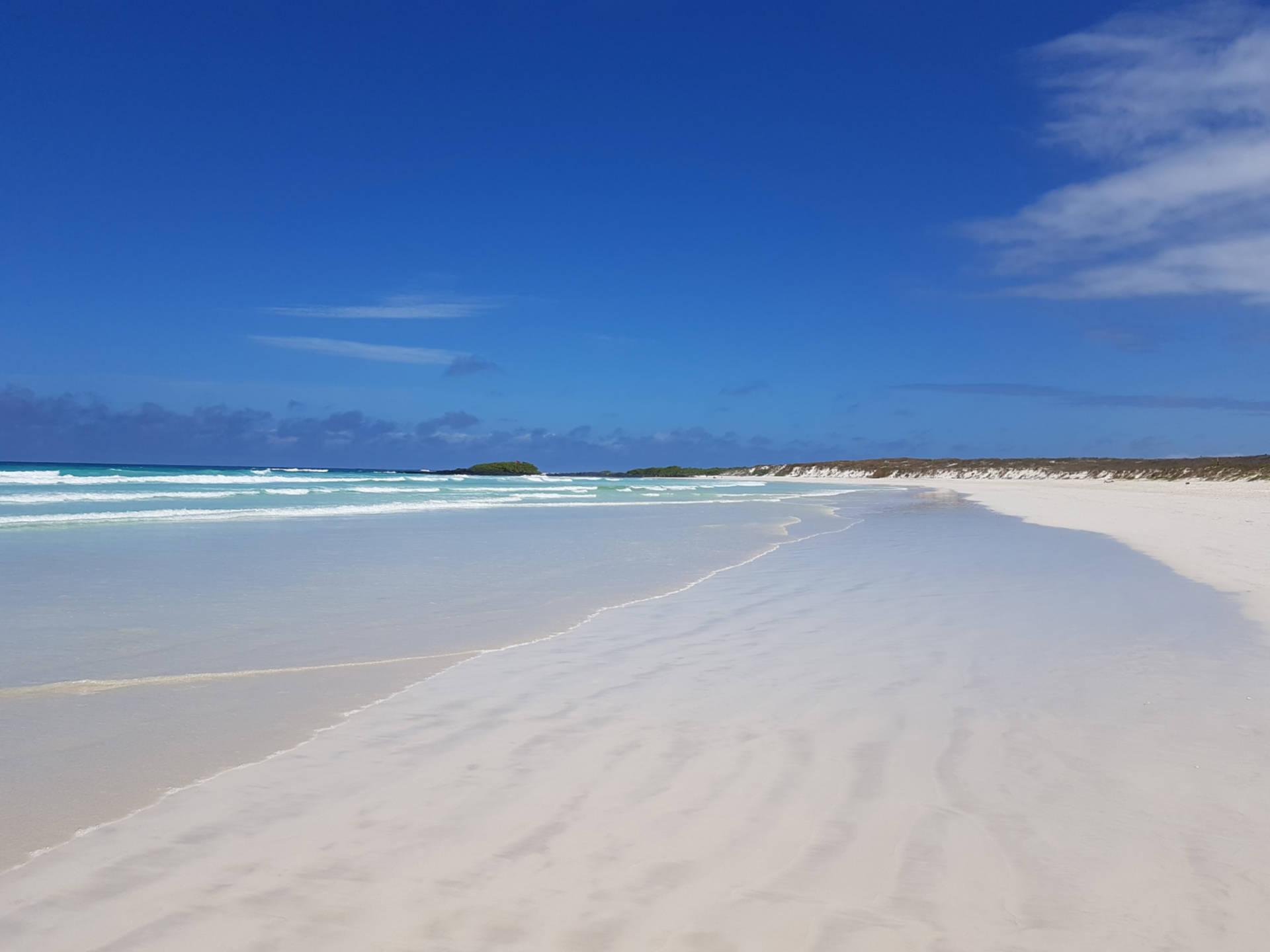 Zaczarowane Wyspy Galapagos (4)