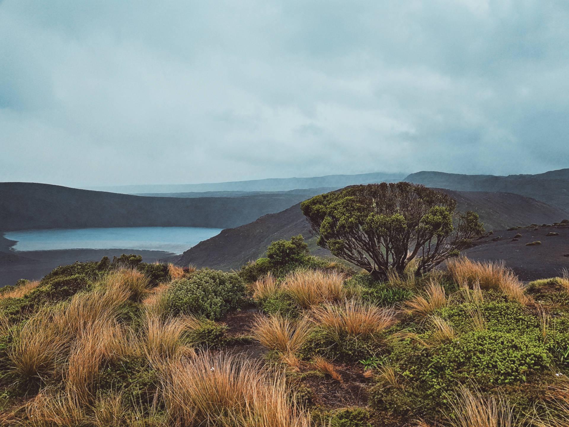 Top 10 najpiękniejszych miejsc wNowej Zelandii (11)