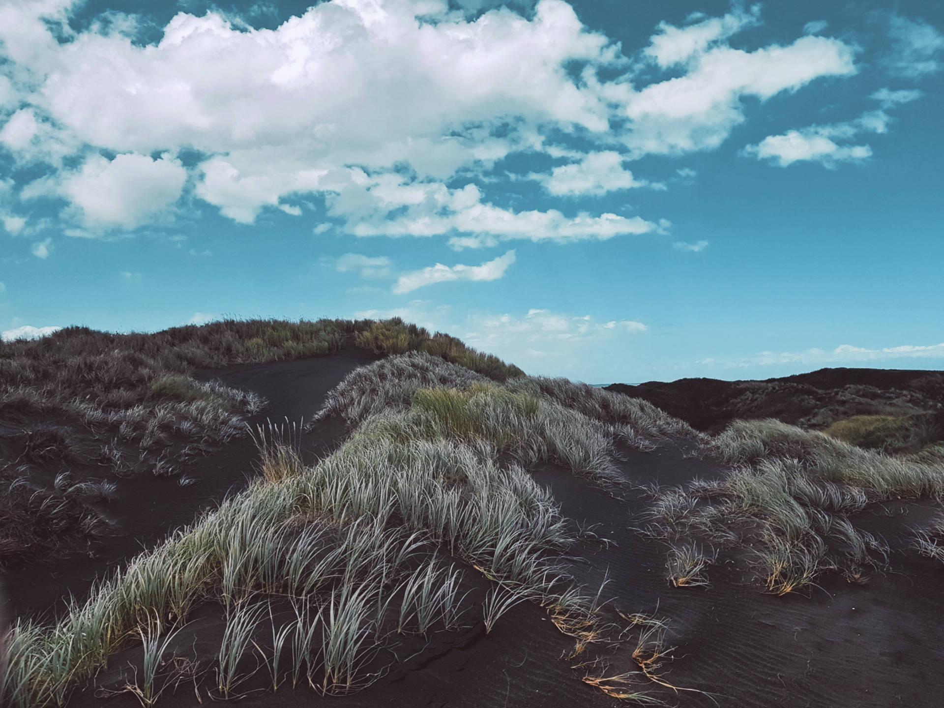 Top 10 najpiękniejszych miejsc wNowej Zelandii (14)