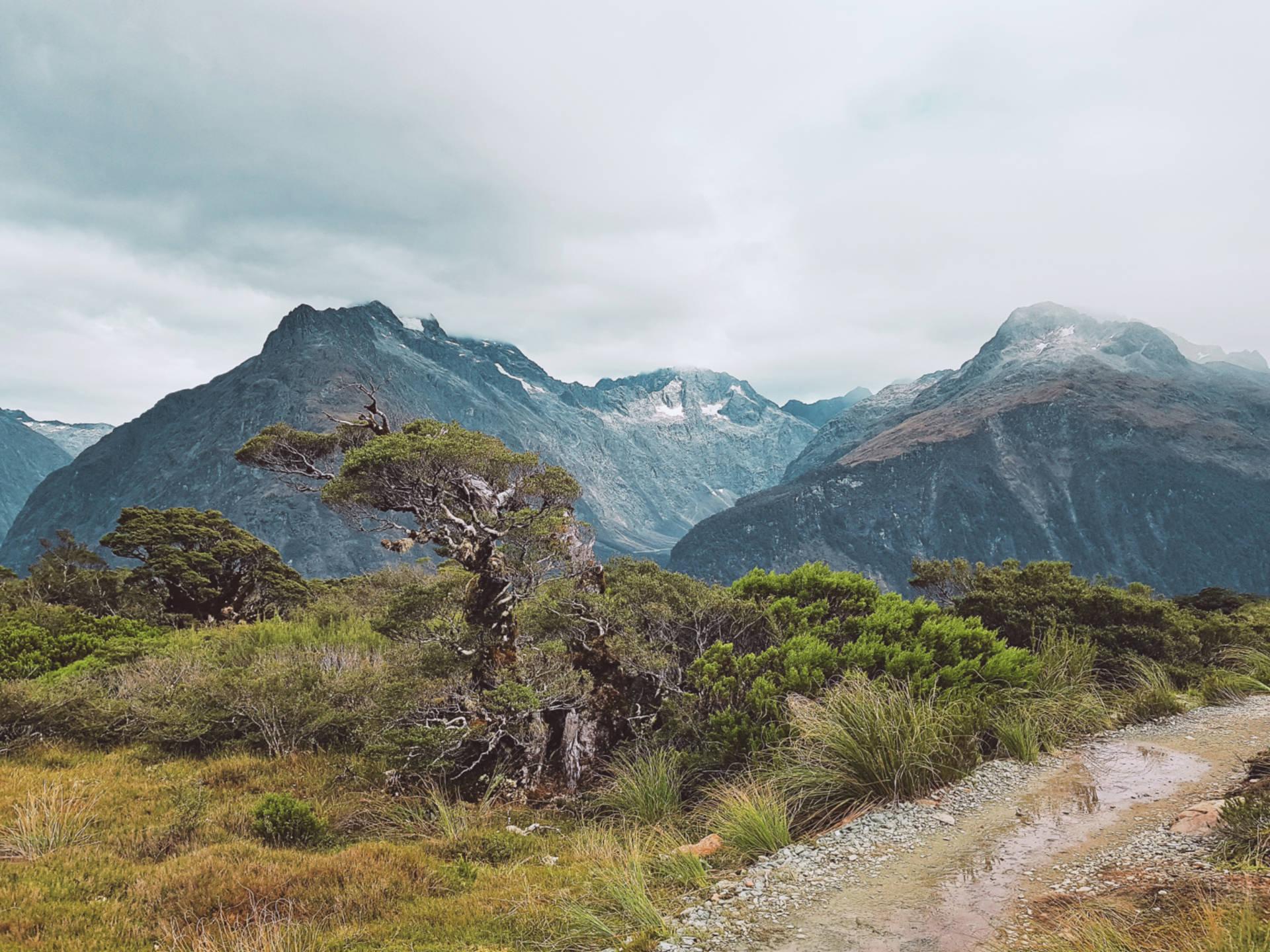 Top 10 najpiękniejszych miejsc wNowej Zelandii (35)