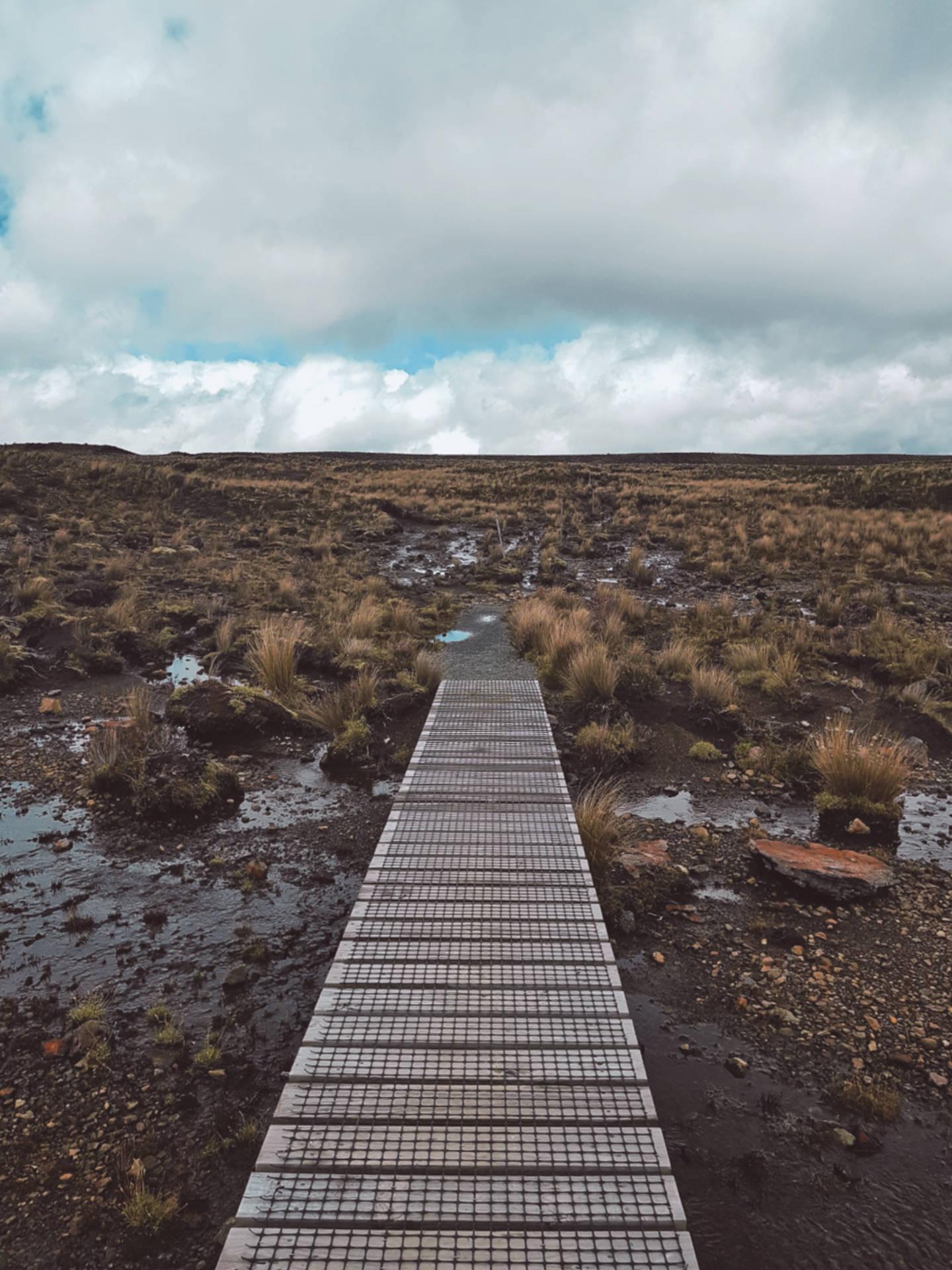 Top 10 najpiękniejszych miejsc wNowej Zelandii (9)